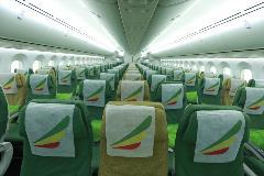787 economy  SASASASA28229